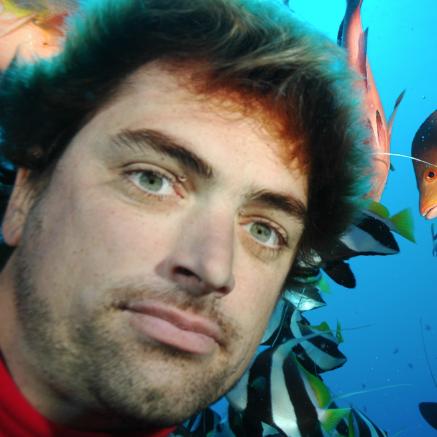 Nicolas Buray, plongeur naturaliste